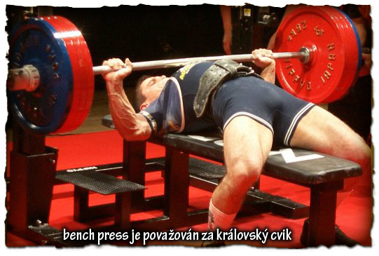 bench-press-je-povazovan-za-kralovsky-cvik
